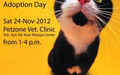 First Adoption Day! 24th Nov 2012